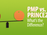 pmp vs prince 160x120 - Common mistakes of PMP® Application