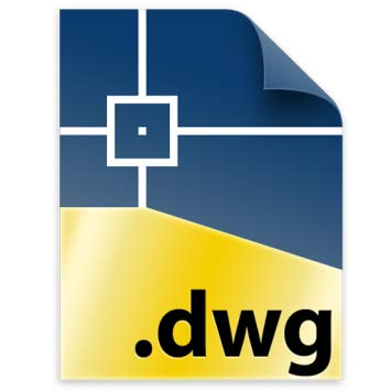 History and Future of DWG