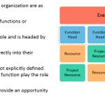 Organization Structure: Functional Organization