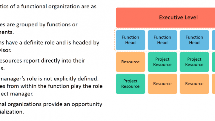 Organization Structure: Functional Organization
