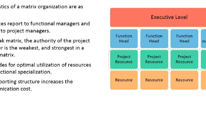 Organization Structure: Matrix Organization