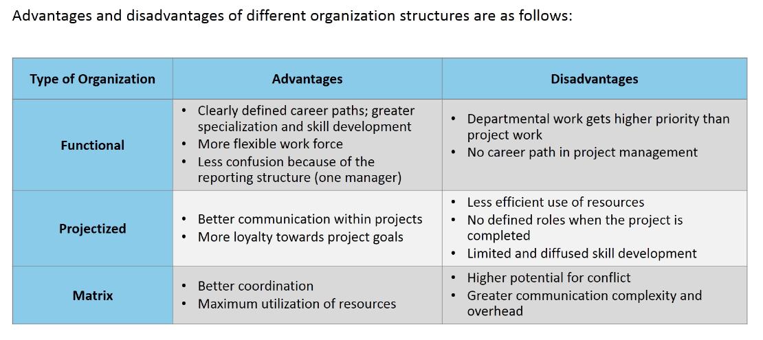 Organizational Structures, Advantages and Disadvantages