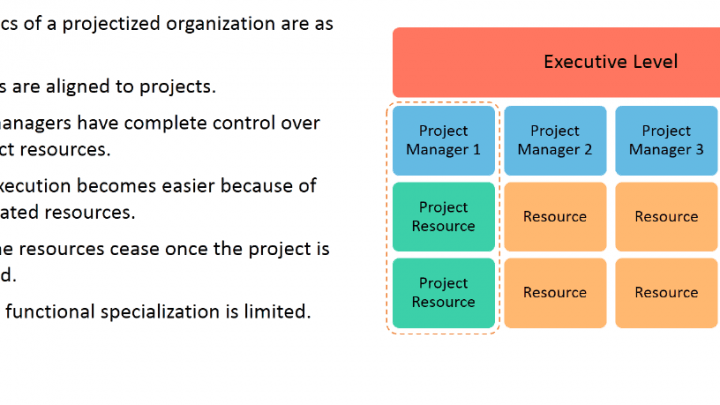 Organization Structure: Projectized Organization