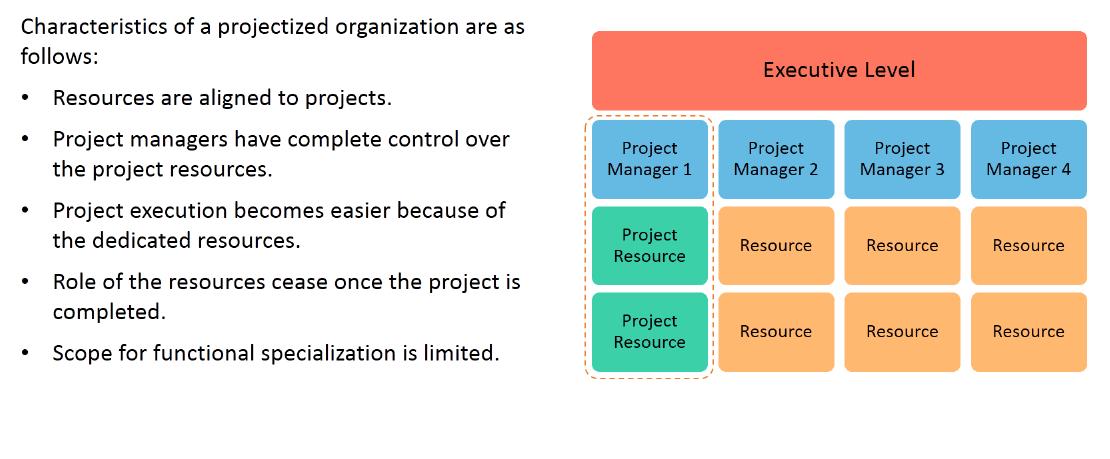 Organization Structure: Projectized Organization